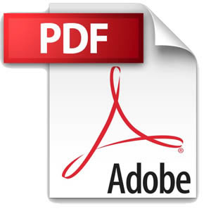 pdf icono2